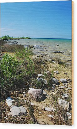 Wood Print featuring the photograph Lake Michigan Shoreline On A Sunny Afternoon by Janice Adomeit