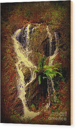 Lake Shasta Waterfall 3 Wood Print by Garnett  Jaeger