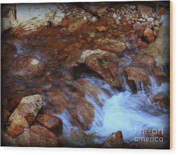 Lake Shasta Waterfall  Wood Print by Garnett  Jaeger