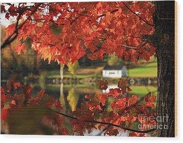 Lake Tarleton New Hampshire Wood Print by Butch Lombardi