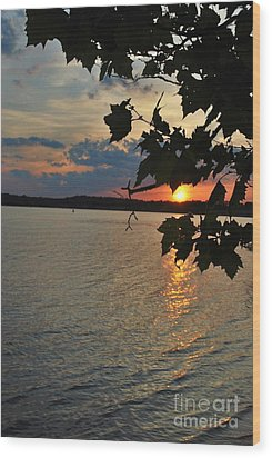 Lakeset Leaves Wood Print by TSC Photography Timothy Cuffe Jr