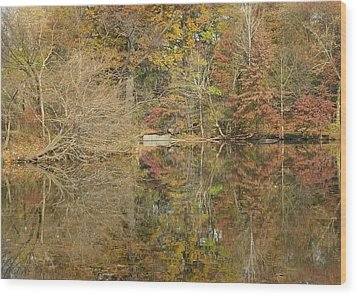 Lakeside Reflections Wood Print by Sarah McKoy