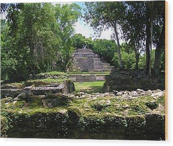 Wood Print featuring the photograph Lamanai- Belize by Li Newton