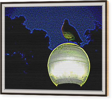 Lamp And The Bird Wood Print by Anand Swaroop Manchiraju