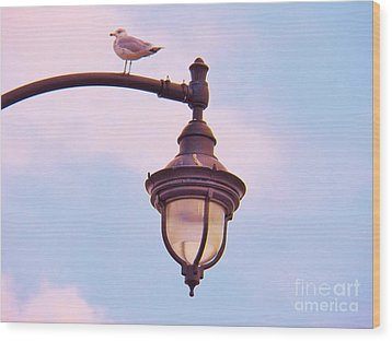 Lampost Gull   Two Wood Print by Judy Via-Wolff