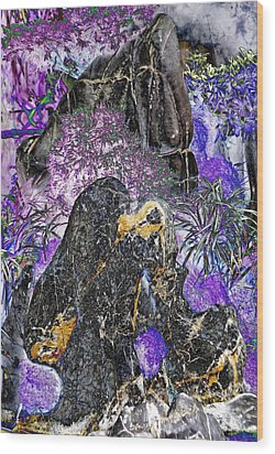 Land Of The Lost Wood Print by Devalyn Marshall
