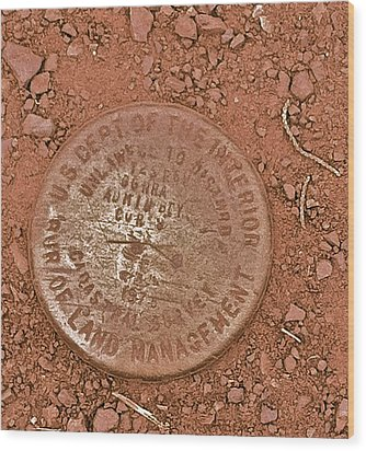 Wood Print featuring the photograph Land Survey Marker by Bill Owen