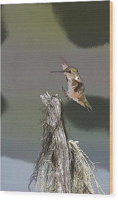 Landing Hummer- Abstract Wood Print by Tim Grams