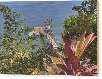 Landing In Boca Chica  Wood Print by Heiko Koehrer-Wagner