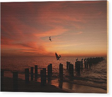 Wood Print featuring the photograph Landing Pattern by Bill Lucas