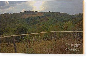 Landscape Greve In Chianti Wood Print by Nettie Pena
