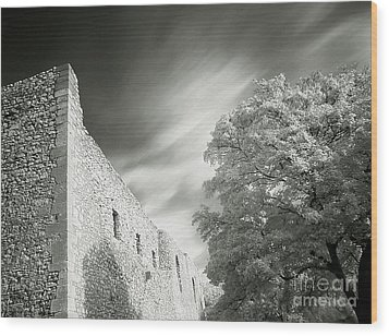 Landscape In Infra Red Wood Print by Odon Czintos
