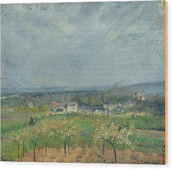 Landscape In Pontoise Wood Print by Camille Pissarro