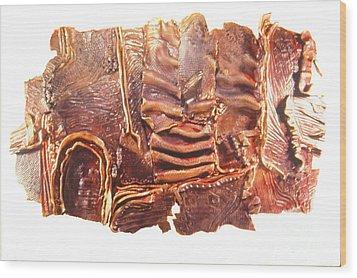 Landscape Wood Print by Judith Birtman
