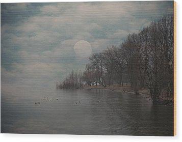 Landscape Of Dreams Wood Print by Joana Kruse