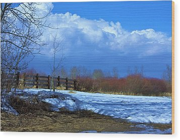 Landscape  Snow Scene Wood Print by Johanna Bruwer