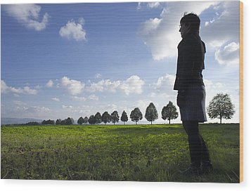 Landscape With Row Of Trees And Person Wood Print by Matthias Hauser
