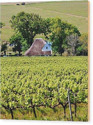 Landscape With Vineyard Wood Print by Werner Lehmann