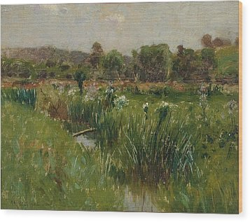 Landscape With Wild Irises Wood Print by Bruce Crane
