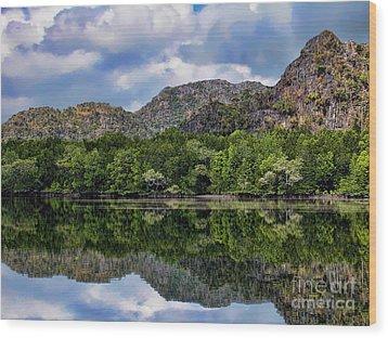 Langkawi Mangrove Tour Wood Print by Graham Taylor