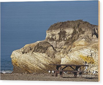 Large Rock And Picnic Area On Beach Wood Print by David Buffington