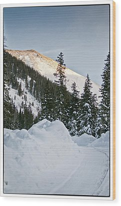 Last Glance At The Mountain Wood Print by Lisa  Spencer