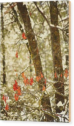 Last Leaves Clinging Wood Print by Bonnie Bruno