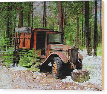 Wood Print featuring the photograph Last Stop by Irina Hays