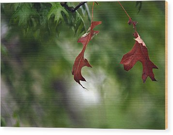 Wood Print featuring the photograph Last To Fall by Wanda Brandon