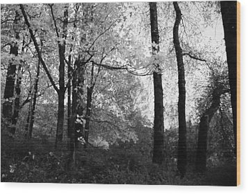 Wood Print featuring the photograph Lasting Leaves by Kathleen Grace