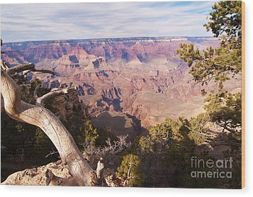 Late Afternoon At The South Rim Wood Print by Bob and Nancy Kendrick