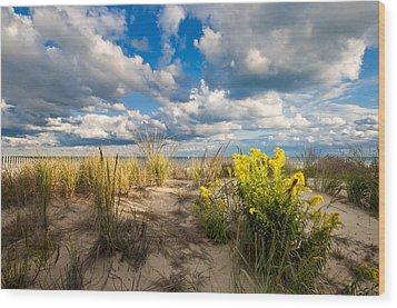Late Summer Dunes Ocean City Wood Print by Jim Moore