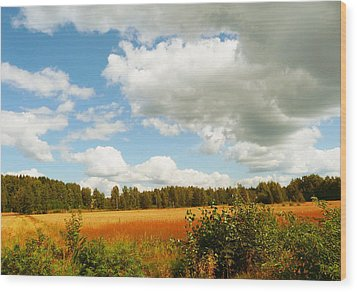 Late Summer Wood Print by Mikko Tyllinen