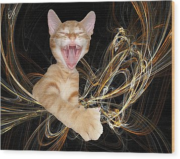 Laughing Rascal Wood Print by Zsuzsa Balla