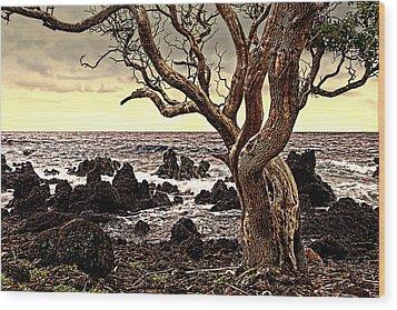 Lava Rocks And The Sea Wood Print