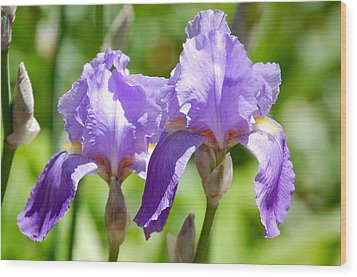Wood Print featuring the photograph Lavender Iris II by Mary McAvoy