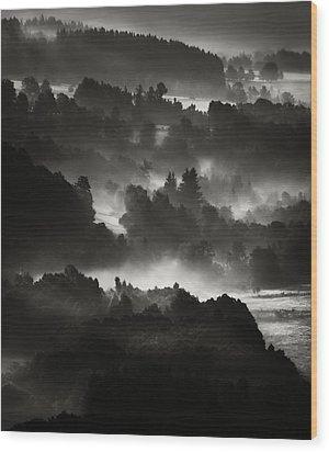Layers Wood Print by Jaromir Hron