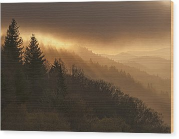 Layers Of Light Wood Print by Joseph Rossbach