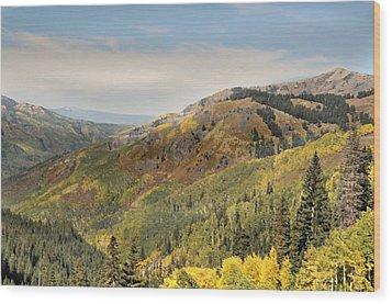 Lead King Basin Road 2 Wood Print by Marty Koch
