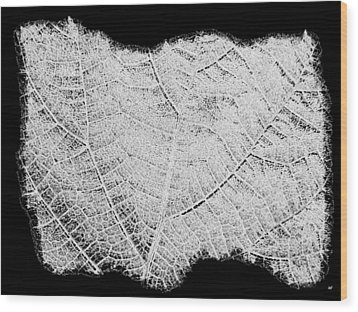 Leaf Design- Black And White Wood Print by Will Borden