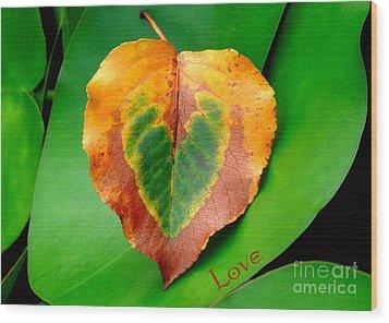 Leaf Leaf Heart Love Wood Print