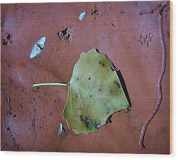 Wood Print featuring the photograph Leaf Libretto by Britt Runyon