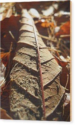 Leaf Litter Wood Print