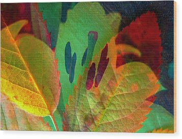 Leaf Reflections Wood Print by Shirley Sirois