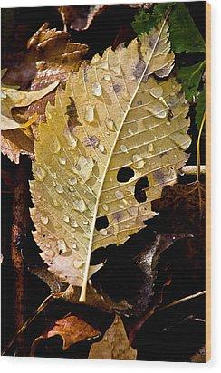 Leafy Tears Wood Print by Burney Lieberman