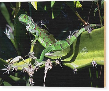 Leapin Lizards Wood Print by Karen Wiles