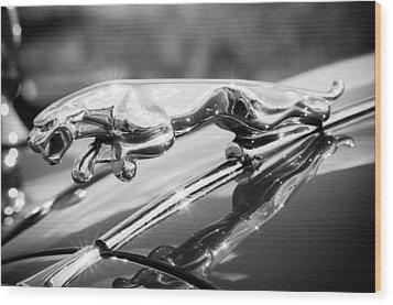 Leaping Jaguar Wood Print by Sebastian Musial