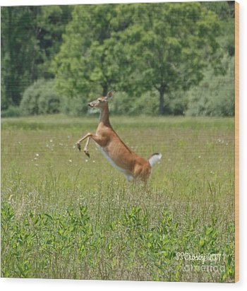 Leaping White-tail Deer Wood Print