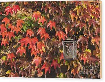 Leaves And Lantern Wood Print by Katja Zuske