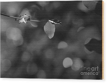 Leaves And Light Wood Print by Dariusz Gudowicz
